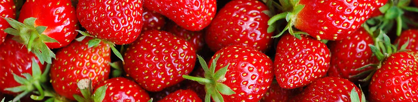 New Season Strawberries