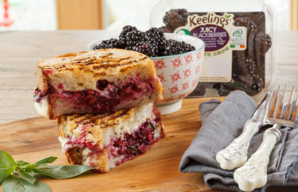 Blackberry Cheese Sandwiches